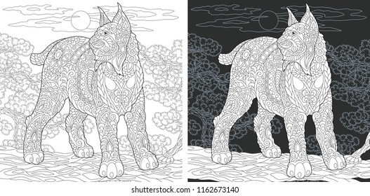 Coloring Page. Coloring Book. Colouring picture with Wildcat drawn in zentangle style. Antistress freehand sketch drawing. Vector illustration.