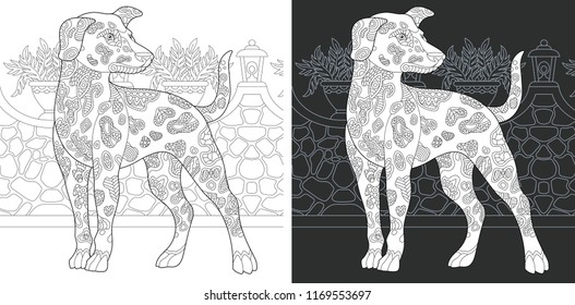 Coloring Page. Coloring Book. Colouring picture with Dalmatian Dog drawn in zentangle style. Antistress freehand sketch drawing. Vector illustration.