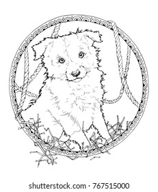 coloring page with border collie in the decorative frame