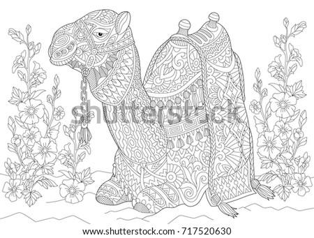 Coloring Page Camel Sitting Among Mallow Stock Vector Royalty Free