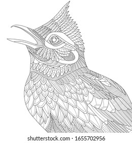 Coloring page. Close-up view of skylark. Vector spring outline illustration of bird with doodles and zentagle elements for coloring book for adults.