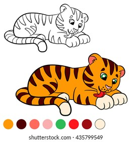 Coloring page. Color me: tiger. Little cute baby tiger cleans himself.