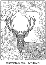 Free Printable Deer Coloring Pages For Kids | 280x197