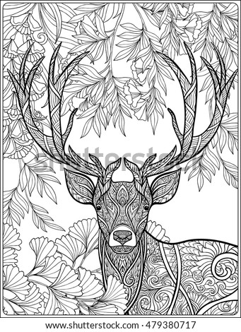 Coloring Page Deer Forest Coloring Book Stock Vector Royalty Free