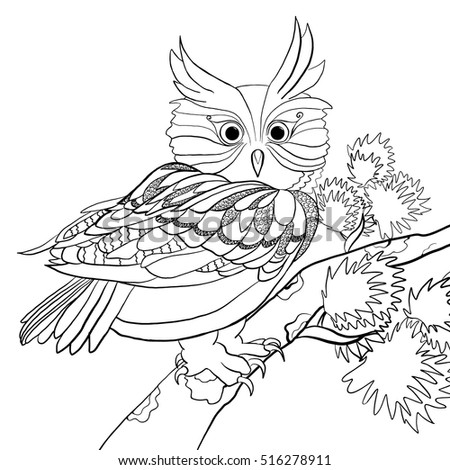 Coloring Page Hand Drawn Cute Owl Stock Vector Royalty Free