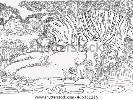 Coloring Page Jungle Africa Tiger Stock Vektorgrafik Lizenzfrei