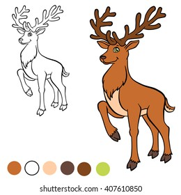 Deer Coloring Pages Hd Stock Images Shutterstock