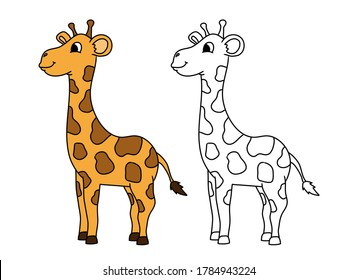 Coloring page. Little cute giraffe stands and smiles,  black and white image and color image