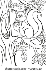 Coloring Page Little Cute Squirrel Sits On The Branch Of A Tree