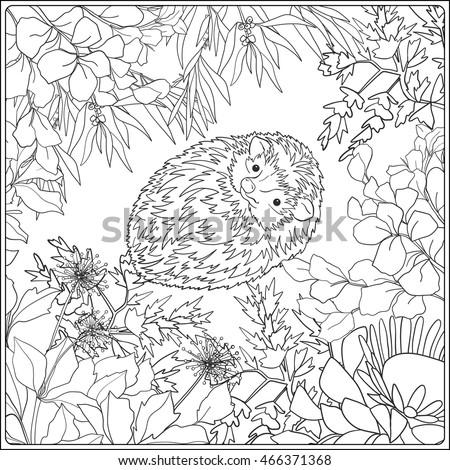 Coloring Page Lovely Hedgehog Coloring Book Stock Vektorgrafik