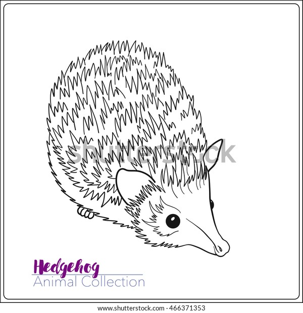 - Coloring Page Lovely Hedgehog Coloring Book Stock Vector (Royalty Free)  466371353