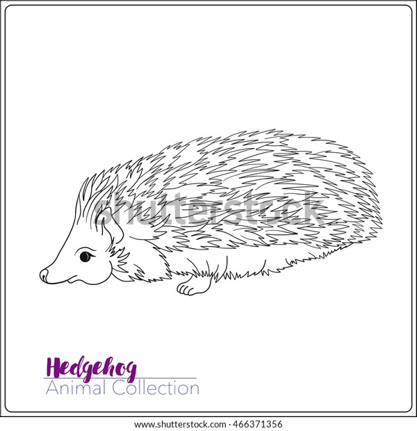 - Coloring Page Lovely Hedgehog Coloring Book Stock Vector (Royalty Free)  466371356