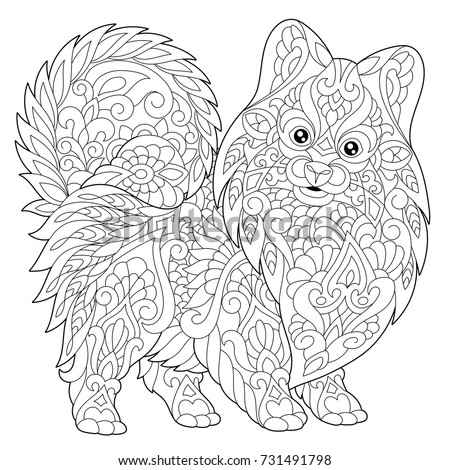 Coloring Page Pomeranian Dog Symbol 2018 Stock Vector (Royalty Free ...