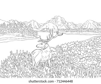 Landscape Colouring Pages Hd Stock Images Shutterstock