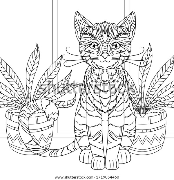 Coloring Pages Adult Funny Fluffy Kitten Stock Vector (Royalty Free)  1719054460