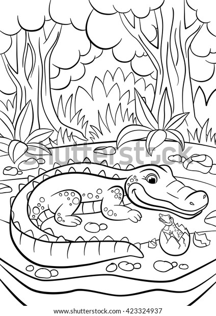Top 25 Free Printable Alligator Coloring Pages Online   620x424