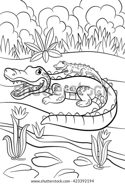 Alligator Coloring Page   crayola.com   620x424