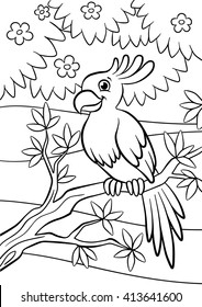 25 Cute Parrot Coloring Pages Your Toddler Will Love To Color | 280x184