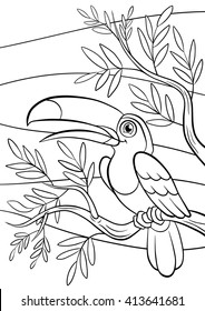 coloring pages birds little cute 260nw