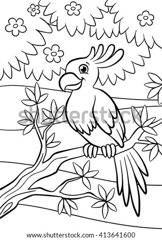 Coloring Pages Birds Little Cute Parrot Stock Vector Royalty Free