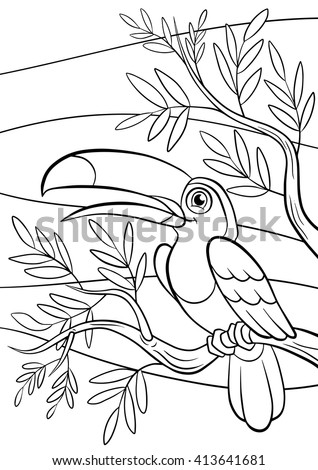 coloring pages birds little cute toucan stock vector royalty free