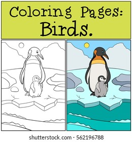 coloring pages birds mother penguin 260nw