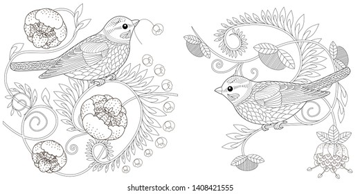 Coloring Pages. Coloring Book for adults and children. Colouring pictures with birds and flowers. Antistress freehand sketch drawing with doodle and zentangle element