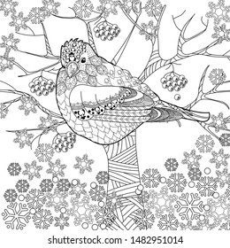 Coloring Pages. Coloring Book for adults and children. Colouring pictures with bird. Antistress freehand sketch drawing with doodle and zentangle elements.