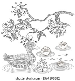 Coloring Pages. Coloring Book for adults. Colouring pictures with duck and flowers. Antistress freehand sketch drawing with doodle and zentangle elements.