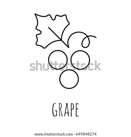 Coloring Pages Bunch Grapes Painting Page Stock Vector Royalty Free