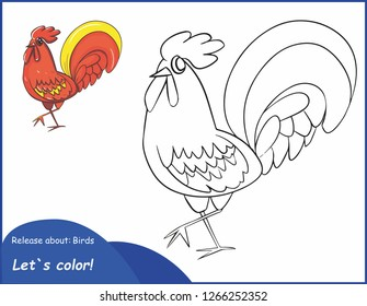 Coloring pages. Color this bird. Vector drawing cock.