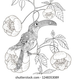 Coloring Pages. Colouring pictures with bird and flowers. Antistress freehand sketch drawing with doodle and zentangle elements.