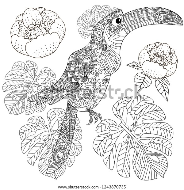 - Coloring Pages Colouring Pictures Bird Flowers Stock Vector (Royalty Free)  1243870735