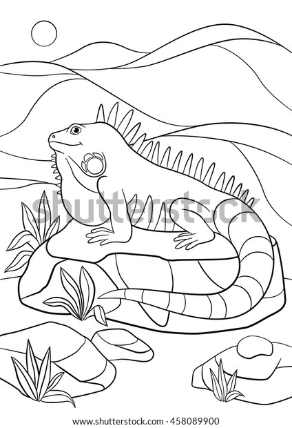 Coloring Pages Cute Iguana Sits On Stock Vector Royalty Free 458089900