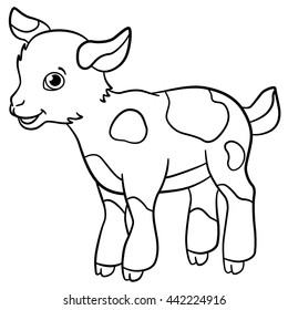 Coloring pages. Farm animals. Little cute spotted goatling stands and smiles.