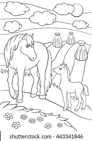 coloring pages farm animals mother 260nw