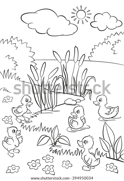Coloring Pages Five Little Cute Ducklings Stock Vector Royalty Free 394950034