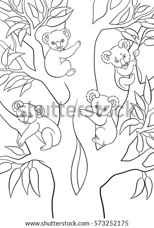 Coloring Pages Four Koala Babies Sit Stock Vector Royalty Free