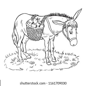 Coloring Pages For Kidslittle Donkey With A Basket Of Apples