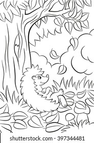 Coloring pages. Little cute kind hedgehog sits near the tree. It`s autumn. The leaves fall from the tree. There are bushes, plants, grass and mushrooms around. The hedgehog is happy.