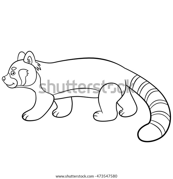 coloring pages little cute red panda stock vector royalty free 473547580 shutterstock