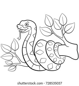 Jungle Animal Coloring Page Images, Stock Photos & Vectors ...