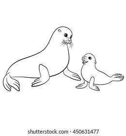Coloring pages. Mother fur seal with her little cute baby.