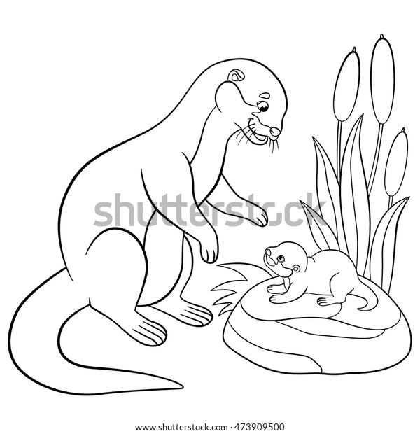 Sea Otter Coloring Page   Bird coloring pages, Detailed coloring ...   620x600
