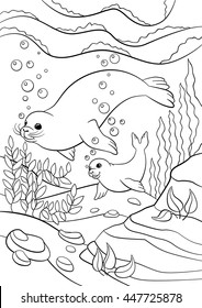 color underwater images stock photos vectors shutterstock Underwater World Wallpaper coloring pages mother seal with her little cute baby swim underwater and smile