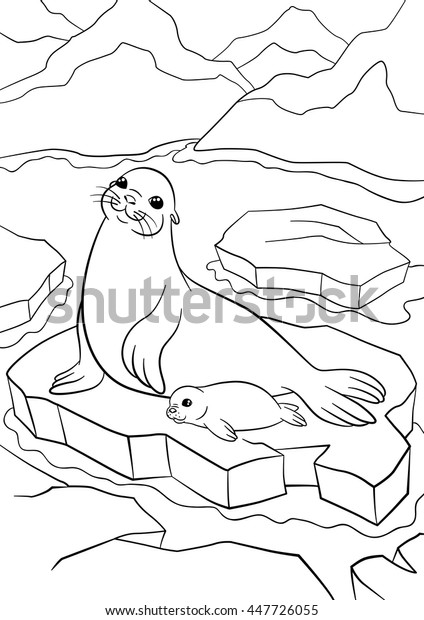 Elephant Seal or Sea Elephant coloring page | Free Printable ... | 620x424