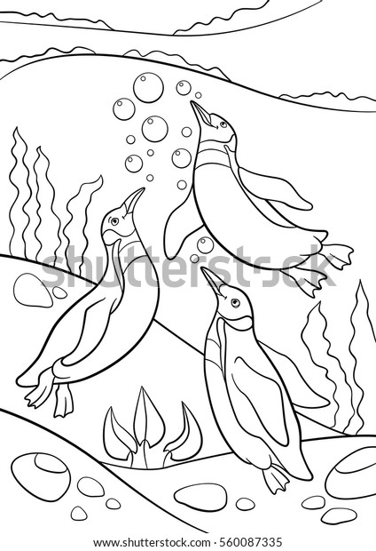 Coloring Pages Three Little Cute Penguins Stock Vector Royalty