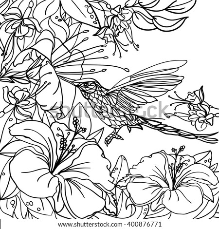 Coloring Pages Tropical Birds Flowers Leaves Stock Vector ...