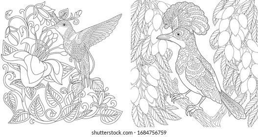 Coloring pages. Tropical birds set. Hummingbird and hoopoe. Line art design for adult or kids colouring book in zentangle style. Vector illustration.