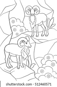 Coloring pages. Two beautiful urials stand on the mountain and smile.